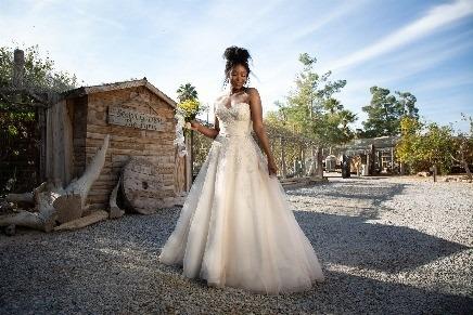 Bride in Brilliant Brfidal gown