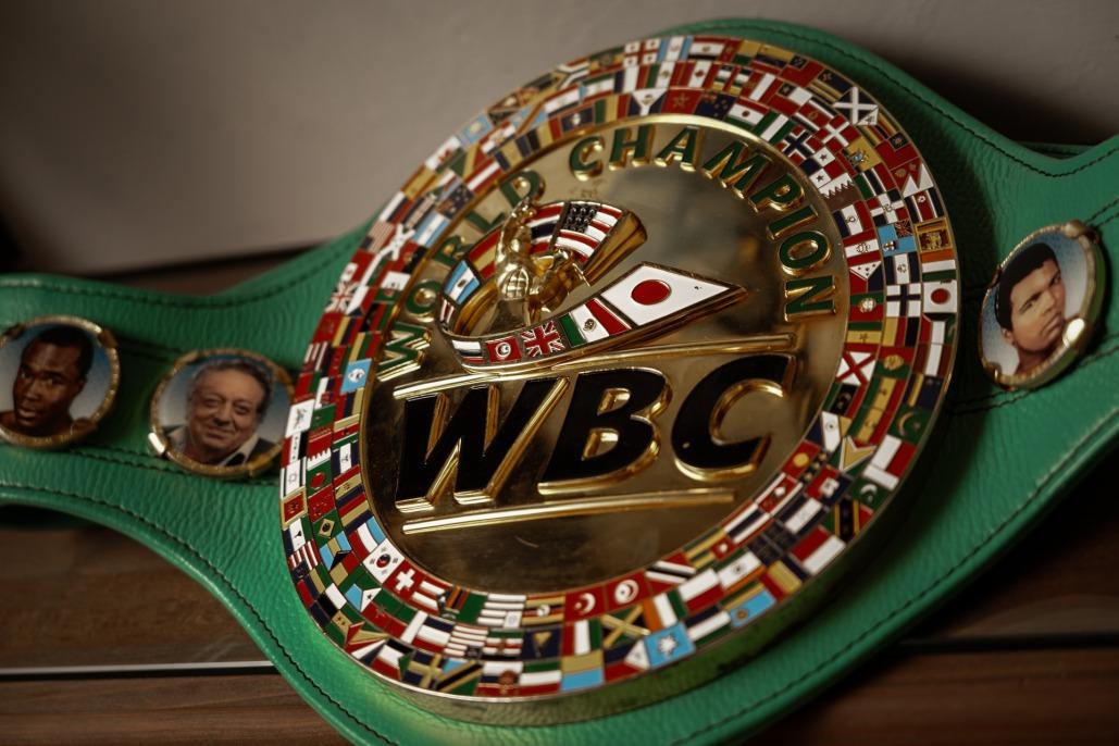 World Boxing Champion sports medal