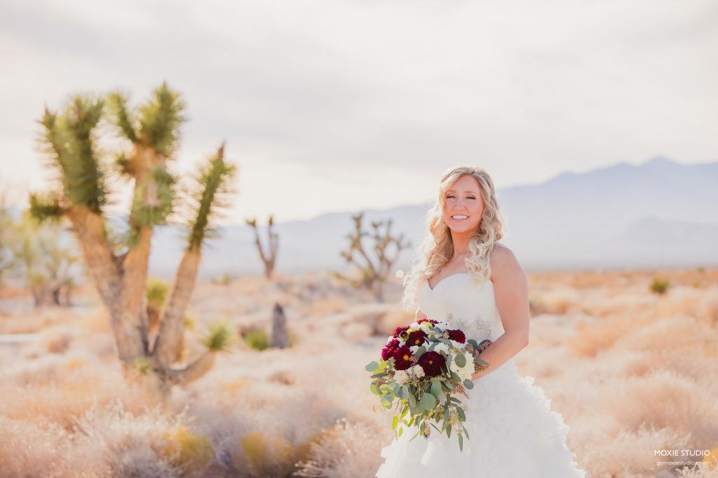 Wedding at Las Vegas Paiute